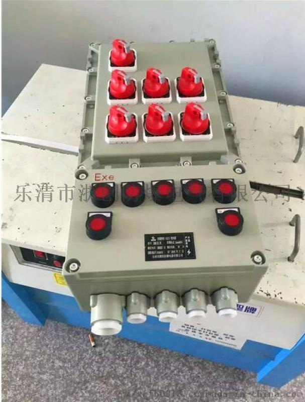 FXMD防水防塵防腐控制箱三防照明動力配電箱