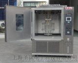 上海圣试SU淋雨试验箱