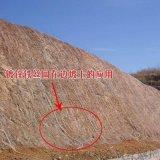 供應龍巖14號鍍鋅綠化格柵網直接生產廠家