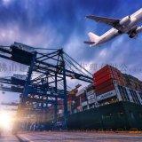 提供佛山货代 佛山到东南亚国际海运服务