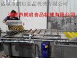鹏启食品机械全自动中药材清洗机厂家