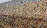 智能温室大棚建设时使用的覆盖膜材料