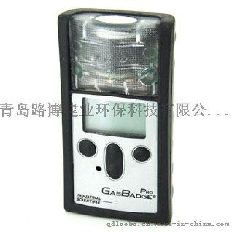 GasBadge英思科单气体检测报警器