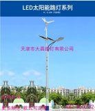 厂家定制家用感应LED太阳能户外风力庭院路灯