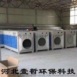 光氧废气净化器 喷漆房工艺原理介绍 河北壹哲环保科技