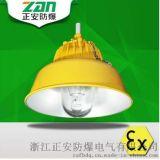 Exe || CT4/T6/BLC8600防爆道路燈