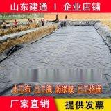 蓮藕種植池塘防滲,山東建通防滲土工膜專業生產