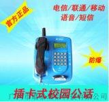 供应PTW515CDMA无线插卡话机 铁壳