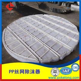 气液分离PP丝网除沫器镶嵌式丝网除沫器