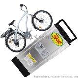 供应 上海百韧48v15ah 电动自行车锂电池