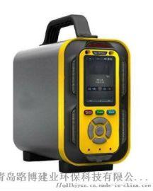 LB-MT6X泵吸手多气体分析仪-电子鼻