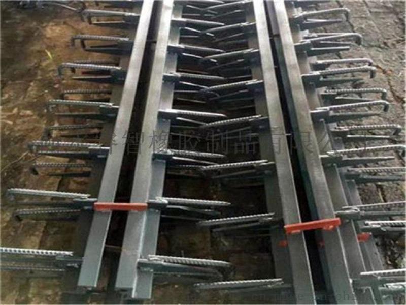桥梁伸缩缝厂家 模数式伸缩缝