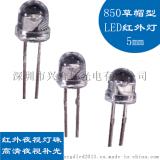 供应5MM草帽120度鼎元850红外发射管车载监控上专用 红外LED