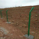 护栏网 优质铁丝护栏网 浸塑公路护栏网现货