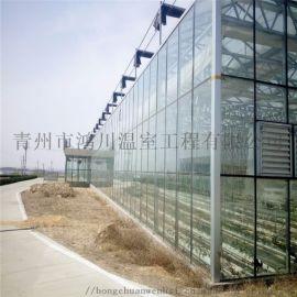 阳光板温室大棚建造及配件 pc板温室工程找鸿川