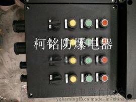 防水防尘防腐控制按钮开关箱