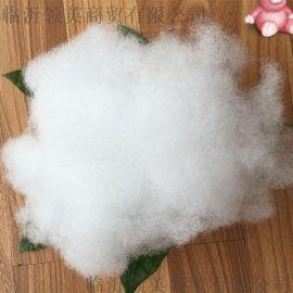 高柔软度高弹性15*64mm再生中空涤纶短纤维 珍珠棉 pp棉 抱枕填充棉