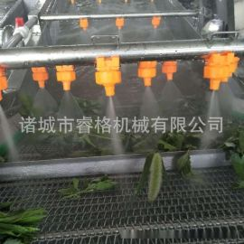 百香果专用清洗机厂家直销小型果蔬清洗线蔬菜清洗线
