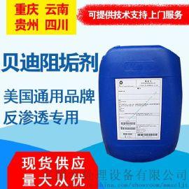 重庆批发美国通用贝迪反渗透阻垢剂 MDC220水处理药剂