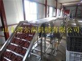 新疆 DR系大棗清洗烘乾設備 葡萄乾清洗殺菌機設備