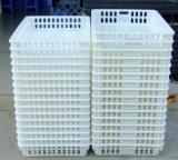 福建禽畜雞籠消毒清洗機 洗雞籠專業清洗設備