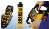 德国DEMAG电动葫芦|DST德马格控制手柄|  价销售