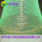小孔塑料網 養殖方孔網 家禽養殖網