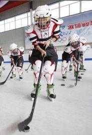 出租出售四季可用仿真滑冰板,科诺可移动滑冰板