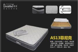 菲尼克系列AS13恒温水床