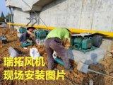 焦作高品质石灰窑罗茨风机厂家直接供货