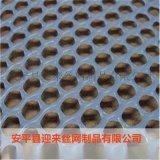 塑料网 养殖塑料网 塑料围栏网