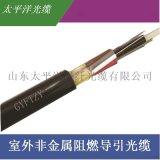 太平洋 室外非金属阻燃光缆GYFTZY-6B1