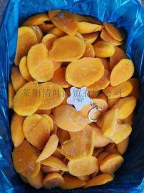 山东工厂直销鲜果速冻冷冻小台芒吨位批量出售