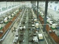 豆腐干生产线