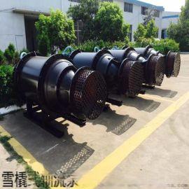 河道  潜水卧式轴流泵
