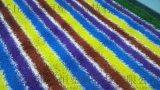 人工草坪價格 線下安裝廠家 人造草坪地毯生產廠家