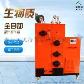 贝思特包装机械用100KG生物质蒸汽锅炉