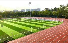 天津宝坻体育场塑胶跑道 混合型塑胶跑道
