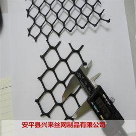 宁波塑料网 安平黑塑料网 育雏网图片