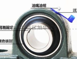 泉州精铸带座外球面轴承 立式 P204轴承座 铸铁