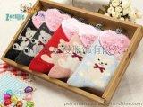 兔羊毛小熊女襪襪子裝 加厚保暖女士純棉冬天襪子中筒襪