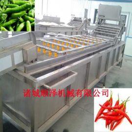 全自动蔬菜清洗机 气泡翻浪式清洗机 果蔬清洗设备