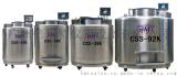 BMT CSS-15K气相储存液氮罐