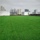 【促銷低價】人造草坪,樓面綠化人工草,PP塑料草