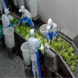 諸城 淨菜加工設備 蔬菜加工設備 一站式淨菜生產線