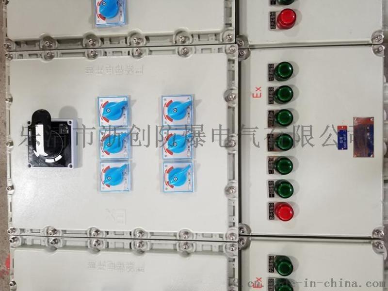 5回路电动阀门防爆动力配电箱
