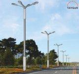 泰LED照明灯、异形路灯,户外路灯、新农村路灯