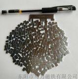 供應釹鐵硼磁鐵 強力小方塊形磁鐵  微型磁鐵生產商
