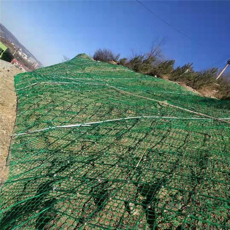 高速路防护网,高速公路防护网,高速路边坡防护网