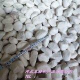 白色鹅卵石 白色水磨石子 白色洗米石 厂家直销
